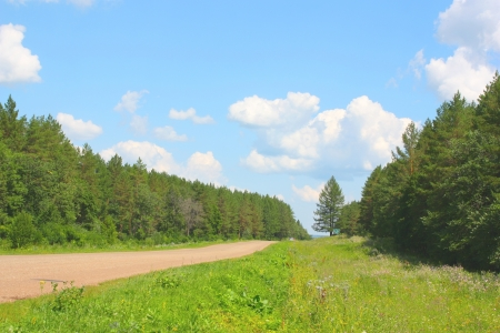 Beautiful summer landscape, forest with blue sky and clouds