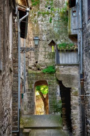 vitorchiano: A little alley at Vitorchiano rural