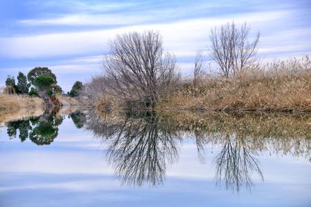 The river reflex