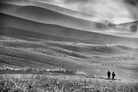 moody monochrome landscape