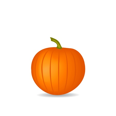 pumpkin Stock Vector - 15713277