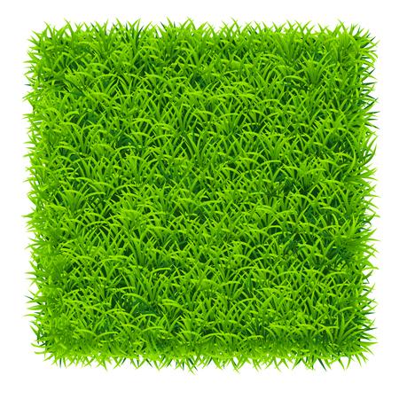 green grass square