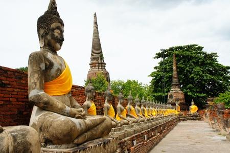 ordelijk: Boeddha, in rijen opgesteld. ordelijk Stockfoto