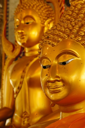 consecrated: Golden Buddha