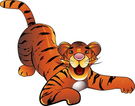 baby tiger: Tigre bambino decorativi su sfondo bianco