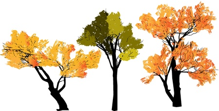 Abstract silhouette of trees on a transparent background Illustration