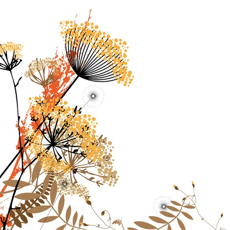 Abstract composition of wild flowers on a white background