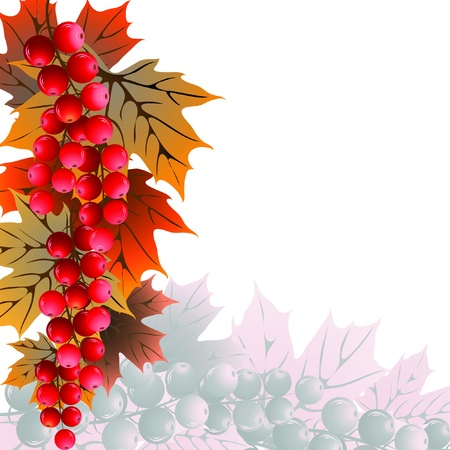 red currant: Abstract background with red currant and leaves on white Illustration