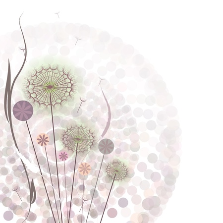 dandelion wind: Gentle floral background with decorative flowers Illustration