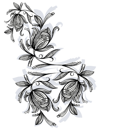 Floral pattern, rose black and white Vector