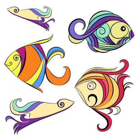 ornamental fish: Pesci ornamentali su uno sfondo bianco
