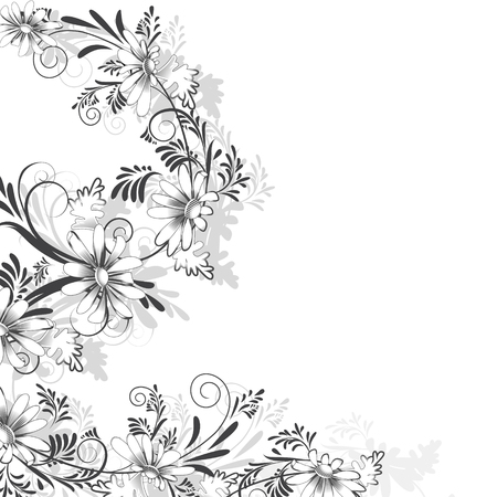black and white plant: Floral pattern of daisies in black and white on a white background in a square