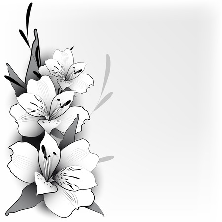 lily: Bouquet of lilies of the graphic style in a neutral light background