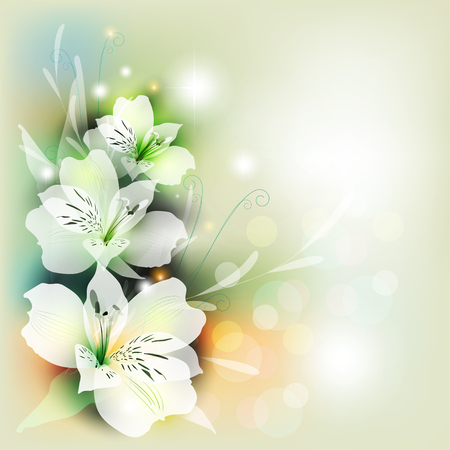 Greeting card with a bouquet of lilies in color on a colored background background with transparent elements