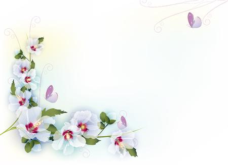 Sfondo floreale delicata Vettoriali