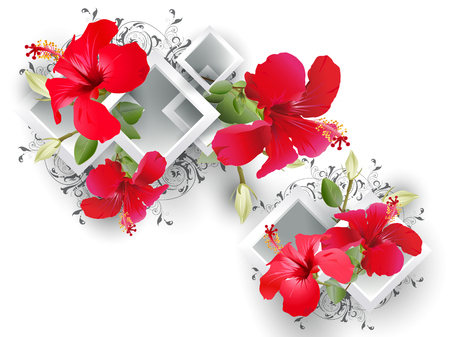 Decorative floral background with hibiscus flowers and architectural elements in the form of three-dimensional diamond frames on a white background