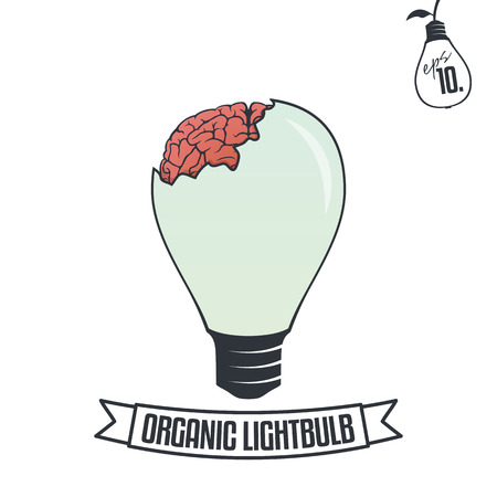brain illustration: Organic Lightbulb with Brain Illustration Illustration