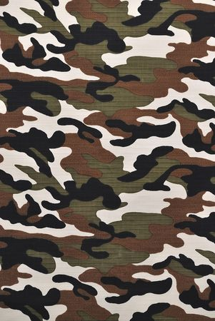 Camouflage fabric in a vertical orientation Stock Photo