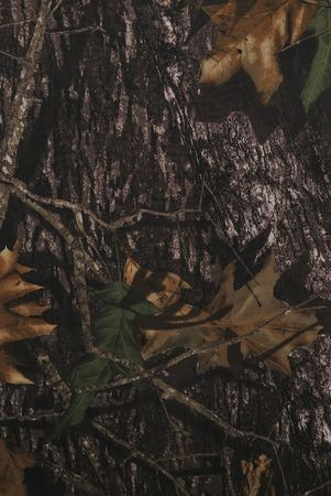 camuflaje: Tela de camuflaje de bosque en una orientaci�n vertical