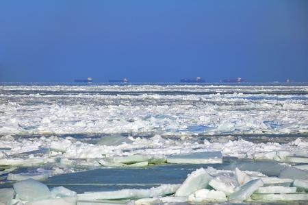 冷凍貨物船海