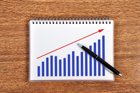scheme growth profits in notebook Stock Photo - 15845771