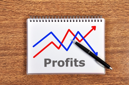 scheme growth profits in notebook photo