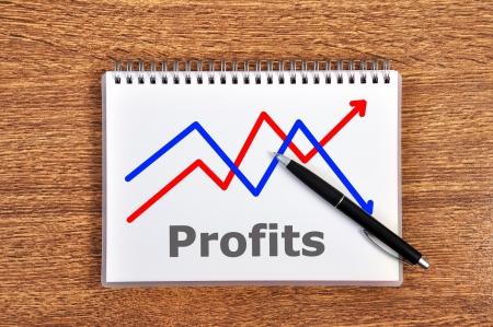 scheme growth profits in notebook Stock Photo - 16126813