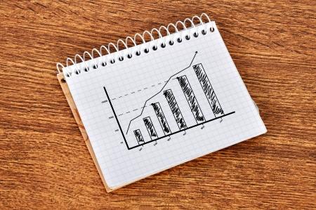 scheme growth profits in notebook Stock Photo - 16985241