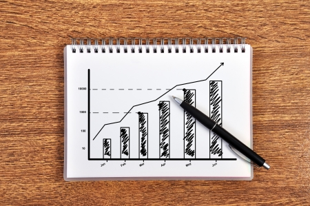 scheme growth of profits in notebook Stock Photo - 17689889