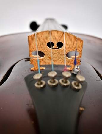 extra: Part old-fashioned violin, extra close up