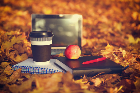 beautiful sunset: Laptop, coffee and diary on autumn landscape as background