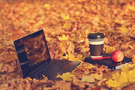 Laptop, coffee and diary on autumn landscape as background