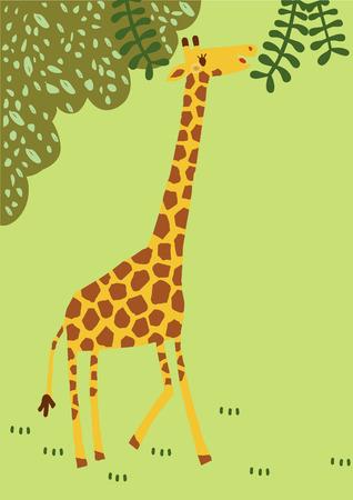 cuello largo: El vector de cuello largo giraffe.has divertido viajar por todo el bosque profundo. Amplia animal de �frica se convierta a Cuty dibujos animados