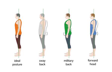 Types of male posture. Vector illustration. Illustration