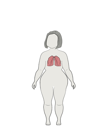 Illustration of human lungs on a silhouette of a full woman. vector illustration. Illustration
