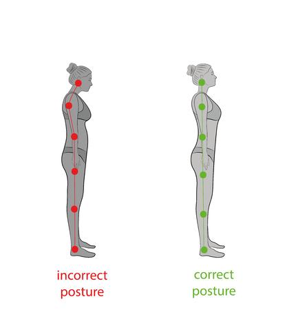 Corretto allineamento del corpo umano in posizione eretta per la buona personalità e la salute della colonna vertebrale e delle ossa. Assistenza sanitaria e illustrazione medica