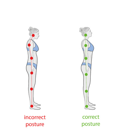 Correct alignment of human body in standing posture for good personality and healthy of spine and bone. Health care and medical illustration
