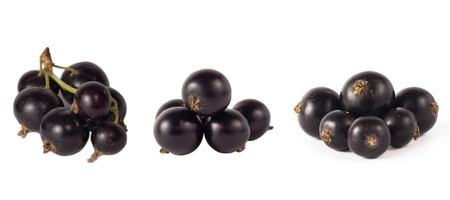 Set of blackcurrant isolated on white. Ripe and tasty black berry with copy space for text. Currant on a white background.