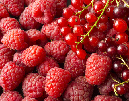 Background of raspberries and red currants. Fresh berries closeup. Top view. Background of red berries. Various fresh summer fruits. Red raspberries. Фото со стока