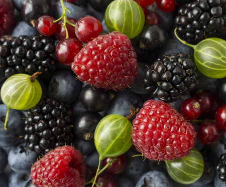 Ripe blackberries, blackcurrants, red currants, raspberries and gooseberries. Mix berries and fruits. Top view. Background berries and fruits. Various fresh summer fruits. Imagens