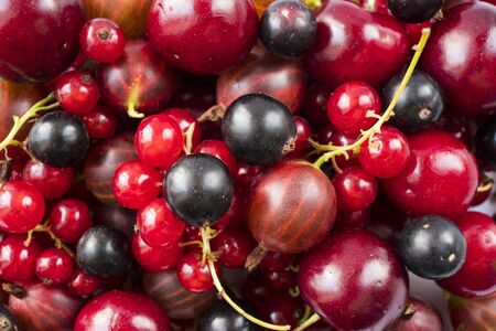 Background of red currants blackcurrants, gooseberries and cherries. Fresh berries closeup. Top view. Background of red berries. Various fresh summer fruits. Red raspberries.