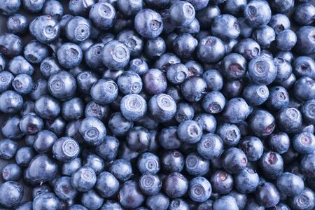 Fresh blueberry background. Texture blueberry berries close up. Ripe bilberry background. Texture bilberry berries close up. Top view. Berry background. Blueberries picked in forest. 写真素材