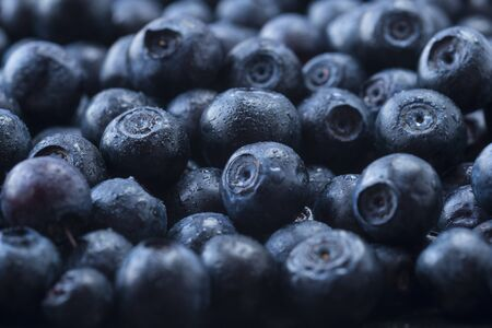 Fresh ripe blueberries with drops of dew. Macro photo. Fresh blueberry background. Texture blueberry berries close up. Ripe bilberry background. Texture bilberry berries close up. Top view. Berry background. Blueberries picked in forest. Berry background.