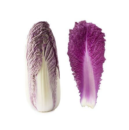 Purple napa cabbage. Red Napa, Chinese Cabbage on white. Purple chinese cabbage isolated on white background.