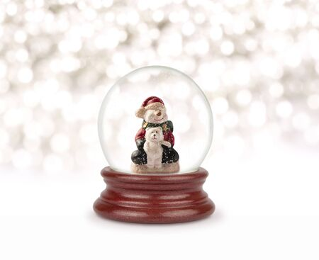 Christmas snow globe on white. Can be used as a Christmas or a New Year gift or symbol. Christmas and New Year design element. Toy glass snow globe with snowman and bear. Snow ball on white.