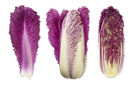 Purple napa cabbage on white. Purple chinese cabbage isolated on white background. Set of chinese cabbage (leaf, head of cabbage and half).