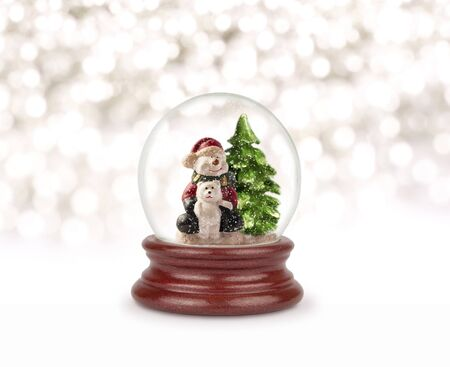 Photo of a snowman and a bear in a glass bowl. Christmas and New Year design element. Toy glass snow globe.