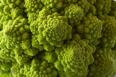 Roman cauliflower close up. Fractal Texture of Romanesco broccoli. Background of roman cauliflower.