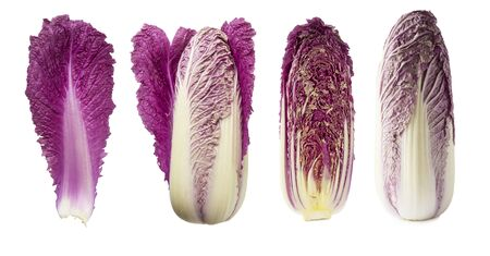 Purple napa cabbage on white. Purple chinese cabbage isolated on white background. Set of chinese cabbage (leaf, head of cabbage and half). Red Napa with copy space for text.
