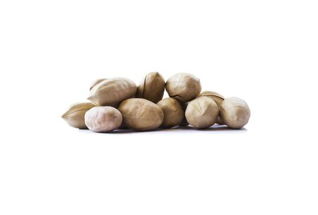 Studio shot of pecans on white background. Heap of pecans in nutshell isolated on white. Pecans with copy space for text. Nuts close-up.